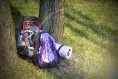 Ryggsäck två i skogen inget arkivfoton