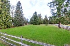 Rymlig fäktad trädgård som fylls med grönt gräs Royaltyfri Bild