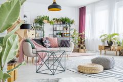 Rymlig vardagsrum med växter fotografering för bildbyråer