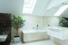 Rymligt badrum i neutrala färger Arkivbild