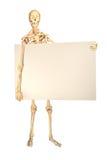 rymma det mänskliga tecknet skelett- arkivbilder