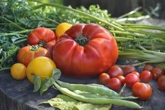 rynek produktów rolnictwa świeże warzywa zdjęcia royalty free