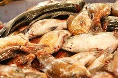 rynek rybny Zdjęcie Stock