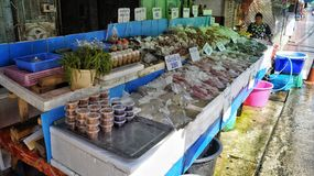 Rynek w Thailand z ryba Fotografia Royalty Free