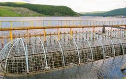 Rynsztokowa woda w Uzyansky rezerwuarze Fotografia Royalty Free