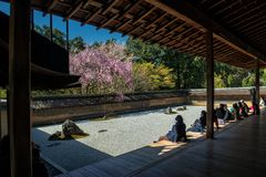Ryoan籍寺庙春天 库存图片