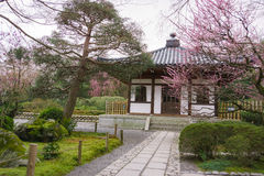 Ryoanji temple gardens in Kyoto, Japan Royalty Free Stock Image