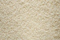 ryżowy suszi Obrazy Royalty Free