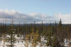 Rysk federation för Murmansk Ryssland nord övergiven region Royaltyfri Bild
