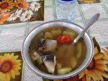 Rysk fisksoup Royaltyfria Bilder