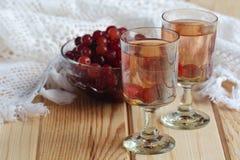 Rysk hemlagad starksprit med vodka och tranbäret royaltyfri foto