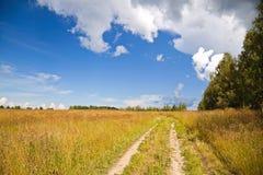 Rysk lantlig liggande med grusvägen Fotografering för Bildbyråer