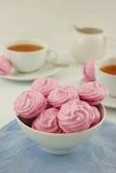 Rysk marshmallow (zefir) Royaltyfri Bild