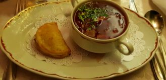 Rysk mat royaltyfria bilder