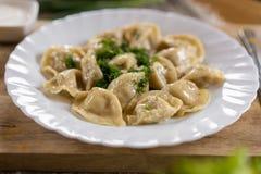 Rysk nationell mat Övre sikt för slut av traditionellt belorussian mål Klimpar i den vita plattan med grönt och surt olivgrön för arkivfoto