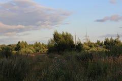 Rysk natur Arkivbilder
