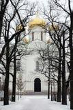 Rysk ortodox domkyrka på vinterdagen Arkivfoto