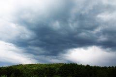 Rysk skog och himmel Arkivbild