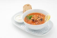 Rysk traditionell soppa med blandat kött Arkivfoto