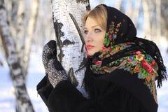 Rysk vinter Arkivbilder