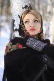 Rysk vinter Arkivfoton