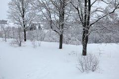 Rysk vinter Royaltyfri Bild