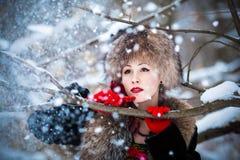 Rysk vinter Fotografering för Bildbyråer