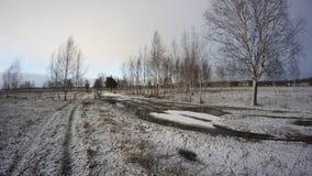 Rysk vinter Arkivfoto