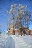 Rysk vinterscape royaltyfri bild