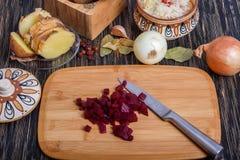 Ryska ättiksåsingredienser: potatisar, beta, morötter, på burk ärtor, inlagd kål, solrosolja och dill Royaltyfria Bilder