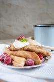 Ryska pannkakor Fotografering för Bildbyråer