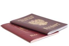 Ryska pass Arkivbilder