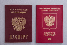 Ryska pass Royaltyfri Bild