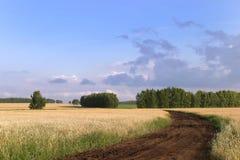 Ryska vägar Arkivbilder