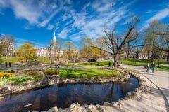 RYSKI, LATVIA, MAJ - 06, 2017: Widok na drogach przemian z okwitnięć drzewami, krzaki i odprowadzeń ludzie w Parkowym bastionie C Fotografia Royalty Free