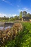 Ryskt lantligt landskap med en sjö och vasser Arkivbild