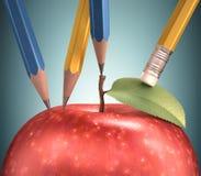 Rysować Apple Zdjęcie Royalty Free