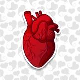 Rysować ludzkiego serce na tło wzorze Royalty Ilustracja