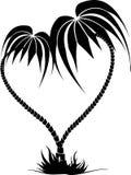 Rysować dwa drzewka palmowego w postaci serca Ilustracji