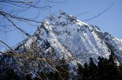 ryss för ossetia för berg för alaniacaucasus federation nordlig Bild för vintertid norr panorama för caucasus liggandeberg Arkivfoto