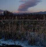 ryss för ossetia för berg för alaniacaucasus federation nordlig Arkivbilder