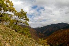 ryss för ossetia för berg för alaniacaucasus federation nordlig observatorium royaltyfria foton