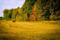 Ryss Sibirien Autumn Hayfield Village Arkivfoton
