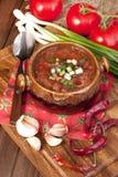 Ryss-ukrainare kokkonst - soppaborscht arkivfoton