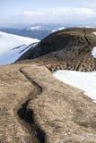 Ryssland Altai berg Arkivbild
