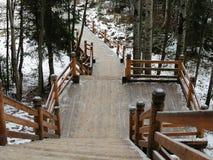 Ryssland - Arkhangelsk - förort Forest Park i vinter - träsluttande trappa Royaltyfri Bild