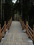 Ryssland - Arkhangelsk - förortForest Park utomhus- museum i vinter - träbro med handhelds Fotografering för Bildbyråer