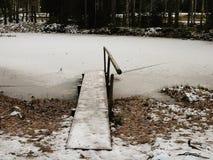 Ryssland - Arkhangelsk - vinterdag på förort Forest Park - fryst damm och gammal bruten träbro med handtaget Royaltyfri Foto