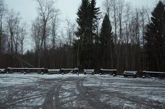 Ryssland Karelia Territorium av den reserv`-Kivach `en, November 17, 2017 Arkivfoto