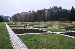 Ryssland Kislovodsk Dalen av rosor i Kislovodsken parkerar Arkivfoto